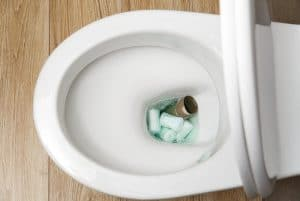 Cómo desatascar el WC o water